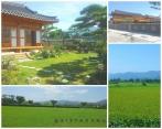 Gyeongju, notre coup de coeur